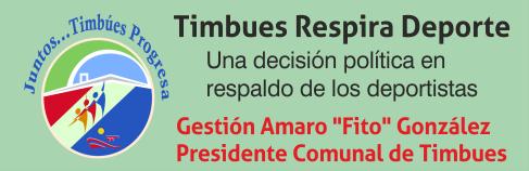 Timbues banner